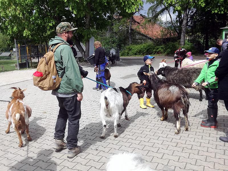 Der Schwillehof - der Erlebnisbauernhof in Pfullingen