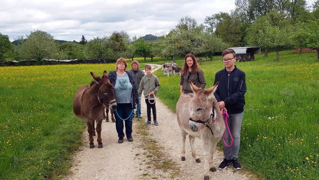 Mit den Eseln vom Schwillehof unterwegs