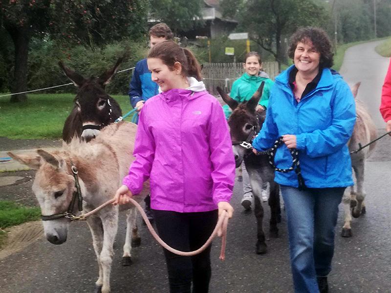 Spass bei einer Wanderung mit den Eseln vom Schwillehof