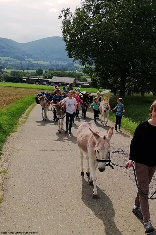 Eselwandern - Am Rande der Schwäbischen Alb.