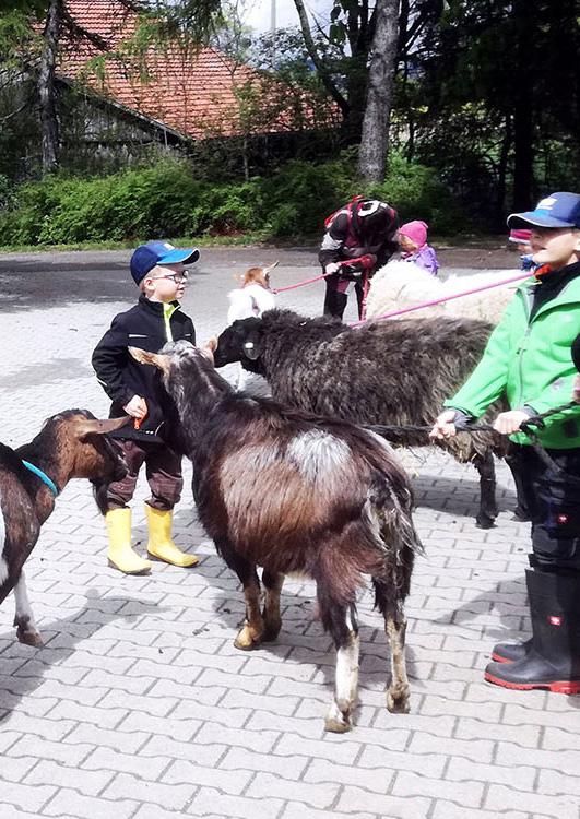 Der Besuch auf dem Schwillehof in Pfullingen ist ein Spaß für Groß und Klein.