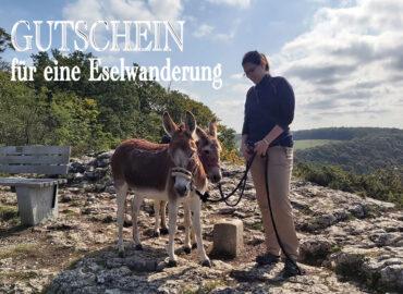 Gutschein für eine Eselwanderung auf dem Schwille Hof in Pfullingen