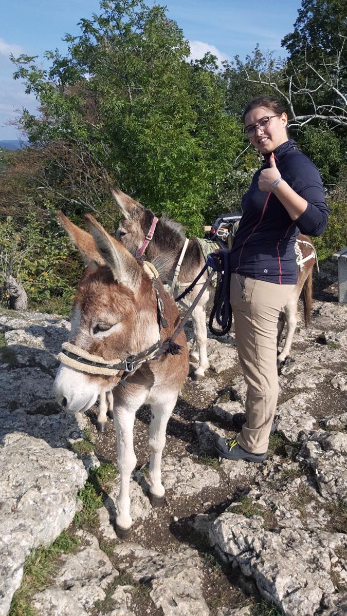 NEU: Gutscheine für eine Esel-Wanderung jetzt online kaufen. Für Deinen Spaziergang oder Deine Wanderung mit unseren Eseln. Zu zweit oder mit der ganzen Familie. Eine wirklich gute Idee! Auch als Geschenk. | Foto: © Schwille Hof